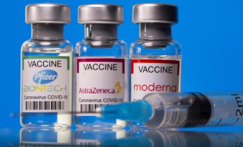 pengaruh vaksin dengan kesuburan
